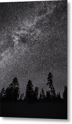Night Serenity Metal Print