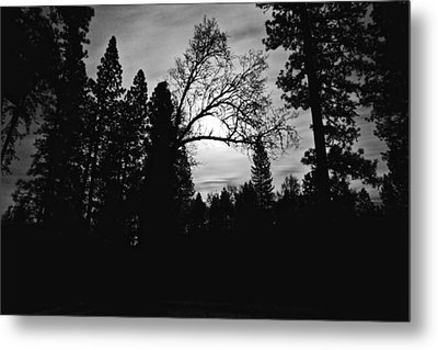 Metal Print featuring the photograph Night Shadows by Lennie Green