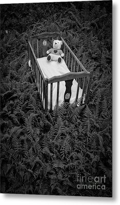 Nightmares And Fairy Tales Metal Print by Edward Fielding