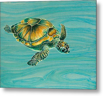 Nik's Turtle Metal Print by Emily Brantley