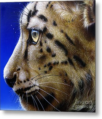 Nina The Snow Leopard Metal Print by Jurek Zamoyski