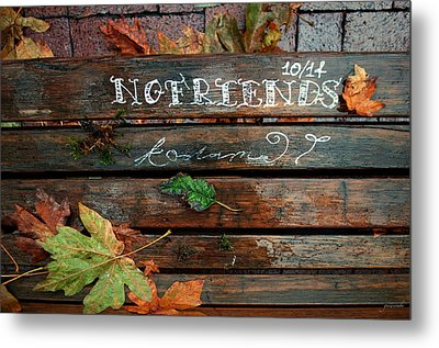 Metal Print featuring the photograph No Friends by Gwyn Newcombe