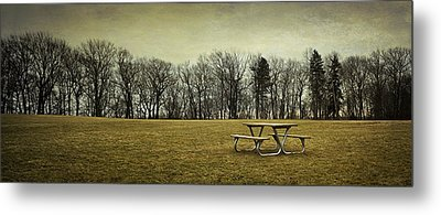 No More Picnics Metal Print by Scott Norris