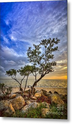 No Stress Today Metal Print by Marvin Spates