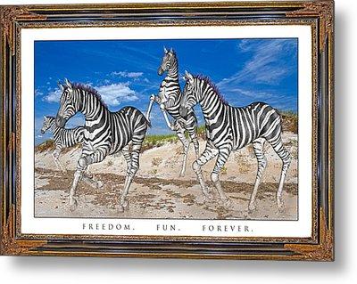 No Zoo Zebras Metal Print