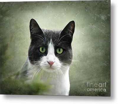 Nobody Knows The Troubles I've Seen Metal Print by Ellen Cotton