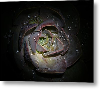 Nocturnal Diamonds Metal Print
