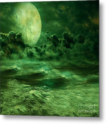 Nocturnal Metal Print by Ester  Rogers