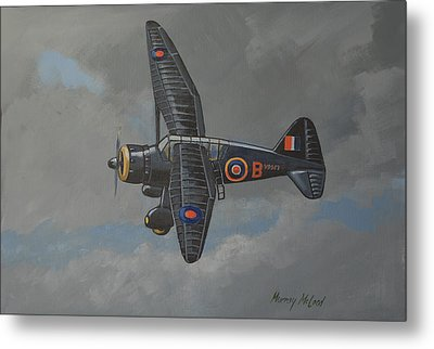 Metal Print featuring the painting Nocturnal Lysander by Murray McLeod