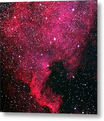 North American Nebula Metal Print by Alan Vance Ley
