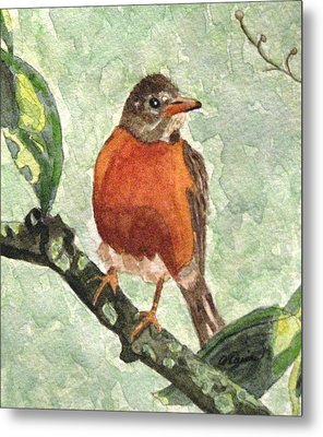 Metal Print featuring the painting North American Robin by Angela Davies