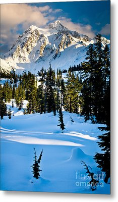 North Cascades Winter Metal Print by Inge Johnsson