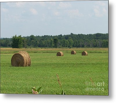 North Country Haystacks Metal Print by Kevin Croitz