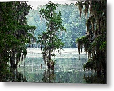 North Florida Cypress Swamp Metal Print by Rich Leighton