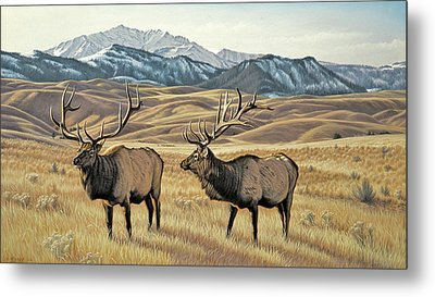 North Of Yellowstone Metal Print