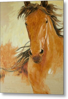 Northbound Metal Print by Tracie Thompson