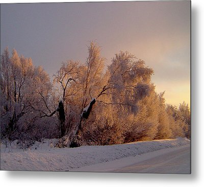 Metal Print featuring the photograph Northern Light by Jeremy Rhoades