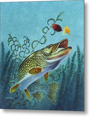 Northern Pike Spinner Bait Metal Print