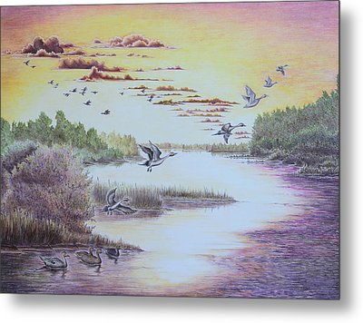 Northern Pintails At Sunset Metal Print