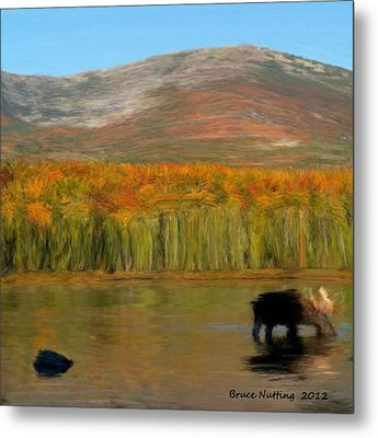 Metal Print featuring the painting Northwest Moose by Bruce Nutting