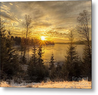 Norway Hedmark Metal Print