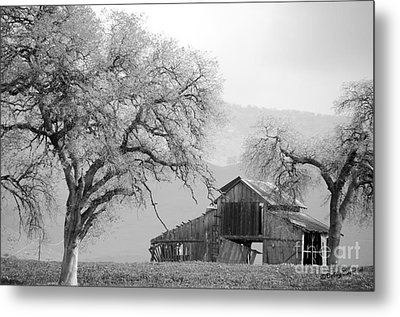 Not Much Time Left Bw Metal Print by Debby Pueschel