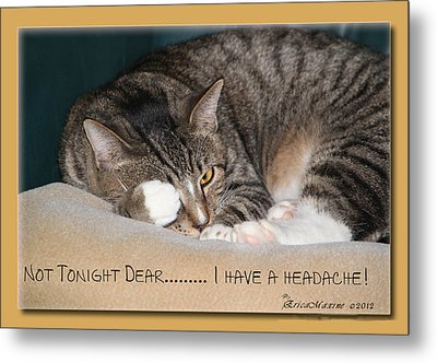 Not Tonight Dear ... Metal Print by EricaMaxine  Price