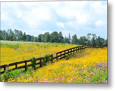 Notch In The Fence Wild Flowers Metal Print