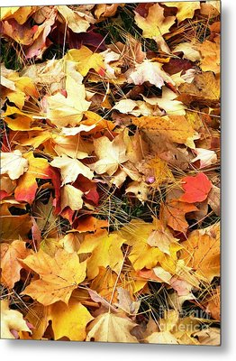 Metal Print featuring the photograph Nothing But Leaves by Mike Ste Marie