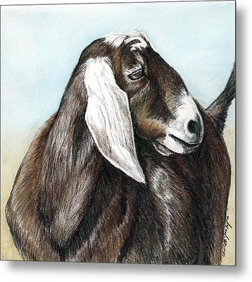 Nubian Goat Metal Print