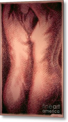 Nude Female Torso Drawings 1 Metal Print by Gordon Punt