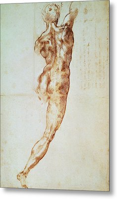 Nude, Study For The Battle Of Cascina Metal Print by Michelangelo Buonarroti