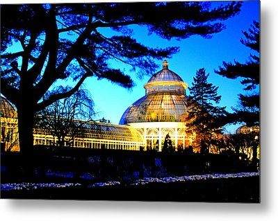 Metal Print featuring the photograph Nybg Winter Scene by Aurelio Zucco