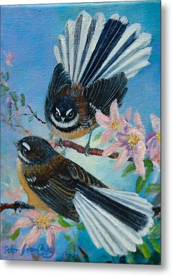 Nz Fantails On Clematis Metal Print by Peter Jean Caley