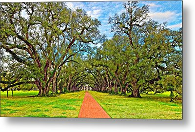 Oak Alley 3 Oil Metal Print by Steve Harrington