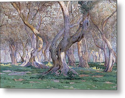 Oak Grove Metal Print by Gunnar Widforss