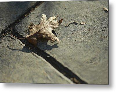 Oak Leaf On Autumn Sidewalk Metal Print by Valerie Collins