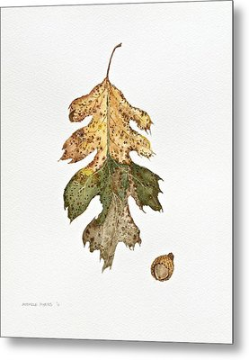 Metal Print featuring the painting Oak Study by Michele Myers