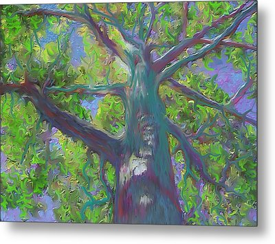 Oak Tree 1 Metal Print