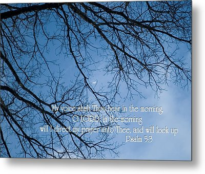 Metal Print featuring the photograph Oak Tree Psalm by Denise Beverly