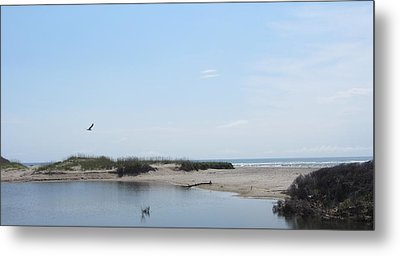 Metal Print featuring the photograph Ocean And Sound by Cathy Lindsey