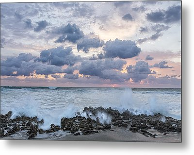 Ocean Blooms Metal Print by Jon Glaser