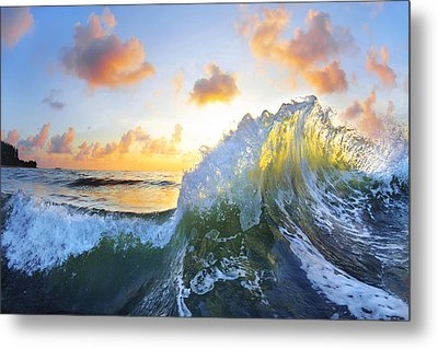 Ocean Bouquet Metal Print by Sean Davey