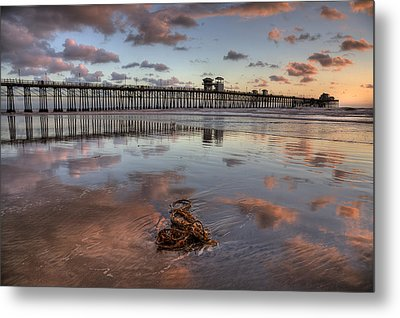 Oceanside Pier Seaweed Metal Print by Peter Tellone
