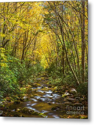 Oconaluftee Splendor Metal Print by Carl Amoth