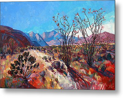 Ocotillo Color Metal Print