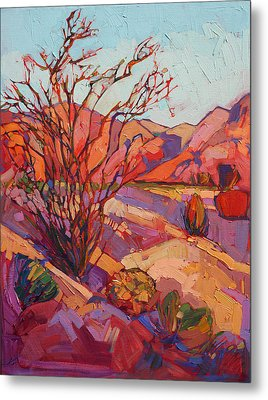 Ocotillo Shadows Metal Print