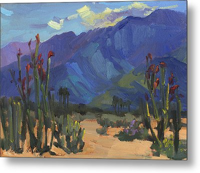 Ocotillos At Smoke Tree Ranch Metal Print by Diane McClary