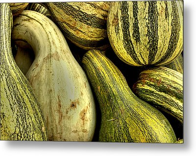 October Gourds Metal Print by Michael Eingle
