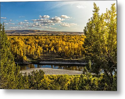 October In Heise Valley Metal Print by Yeates Photography